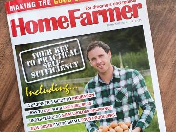 Magazine editorial : Versatile Insurance